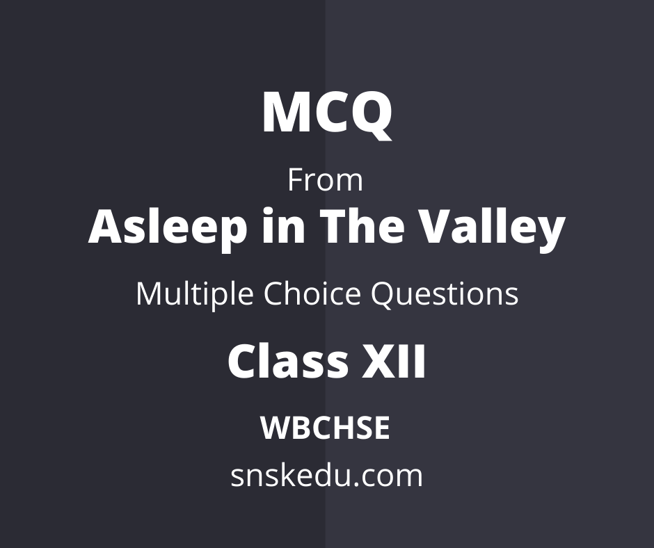 Multiple Choice Questions from Asleep in the Valley